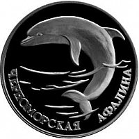 The Black Sea bottlenose dolphin